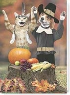 Funny Thanksgiving Card #2002662-P